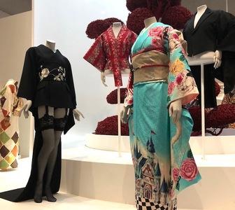 Medium kimono 1